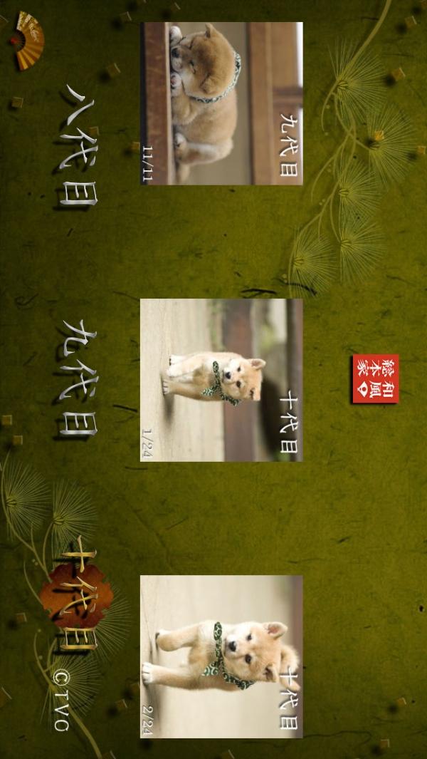 「豆助~和風総本家 八、九、十代目豆助写真集~」のスクリーンショット 1枚目