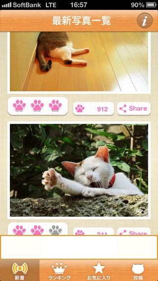 「ねこまみれ  -かわいい猫写真が見放題!「ねこのきもち」公式アプリ-」のスクリーンショット 2枚目