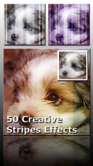 「AceCam Stripes - Photo Effect for Instagram」のスクリーンショット 1枚目