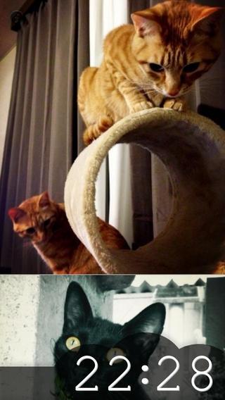「にゃんこクロック 猫好きの猫好きによる猫好きのための時計」のスクリーンショット 2枚目