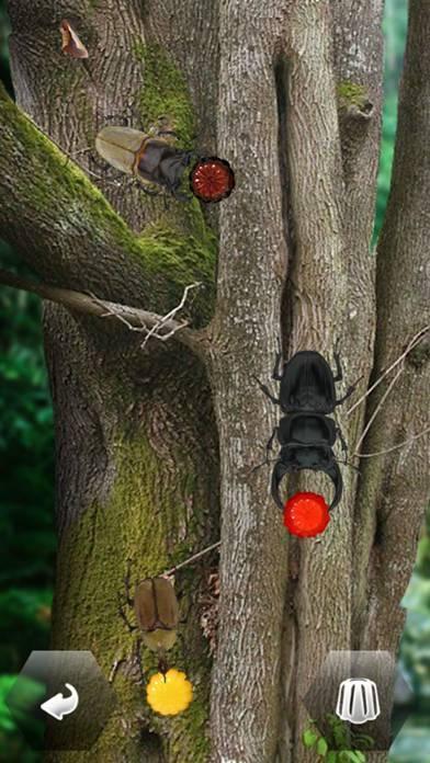「世界の昆虫採集」のスクリーンショット 1枚目