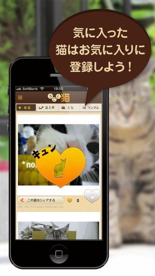 「うごく猫 -激かわ猫満載のうごく猫GIFまとめアプリ。毎日更新される爆笑ねこGIFや癒しねこGIFがいつでも見れる-」のスクリーンショット 2枚目
