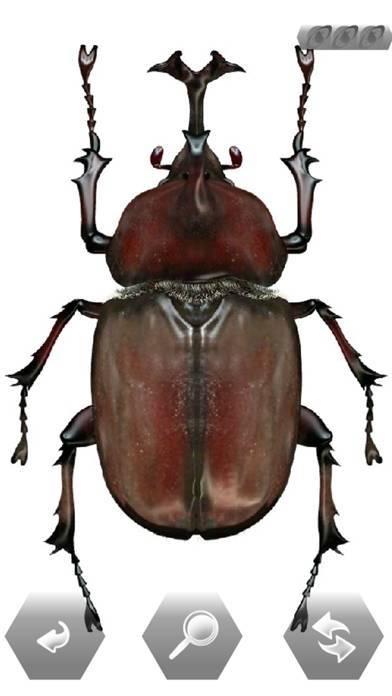 「世界の昆虫採集ライト」のスクリーンショット 3枚目
