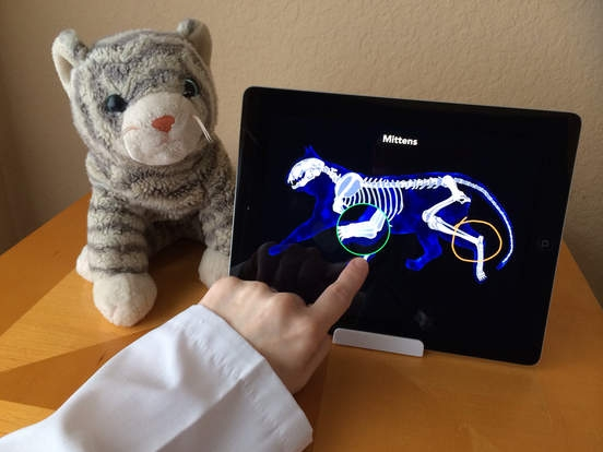 「Dr. PetPlay - Pretend Play Veterinarian With Your Own Stuffed Toy Animals」のスクリーンショット 2枚目