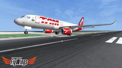 「Flight Simulator Online 2014 HD - Fly Wings - Flying in New York City, Real World」のスクリーンショット 3枚目