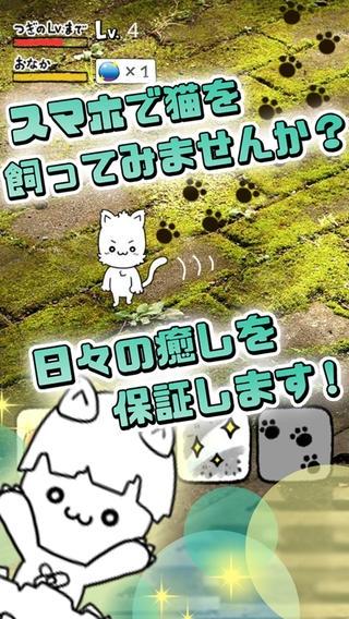 「にゃんこ日和〜ほのぼの子猫育成ゲーム〜」のスクリーンショット 2枚目