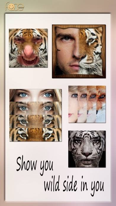 「InstaFace:face eyes blend morph with animal effect」のスクリーンショット 1枚目