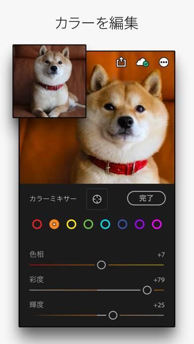 「Adobe Lightroom:画像編集・写真加工フィルター」のスクリーンショット 3枚目