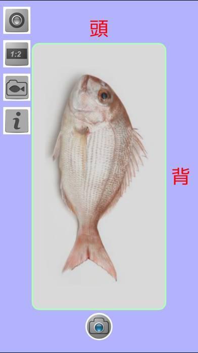「教えて!魚」のスクリーンショット 1枚目