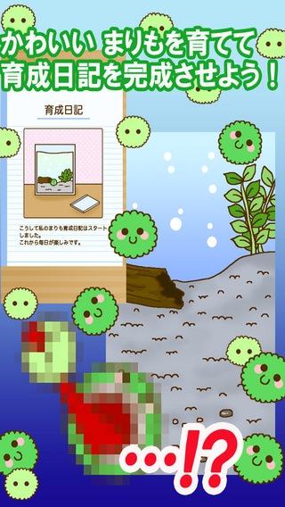 「かわいい育成ゲーム まりまりも育成日記」のスクリーンショット 1枚目