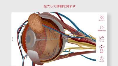 「解剖学的構造と生理学」のスクリーンショット 3枚目