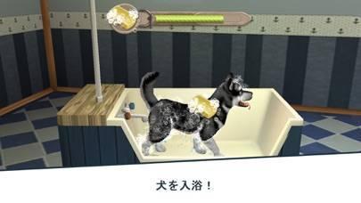 「Dog Hotel - 犬と遊ぶ」のスクリーンショット 2枚目