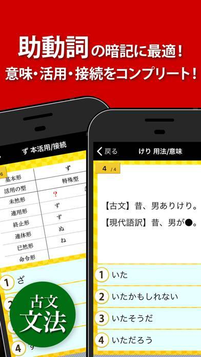 「古文・漢文(古文単語、古典文法、漢文)」のスクリーンショット 2枚目