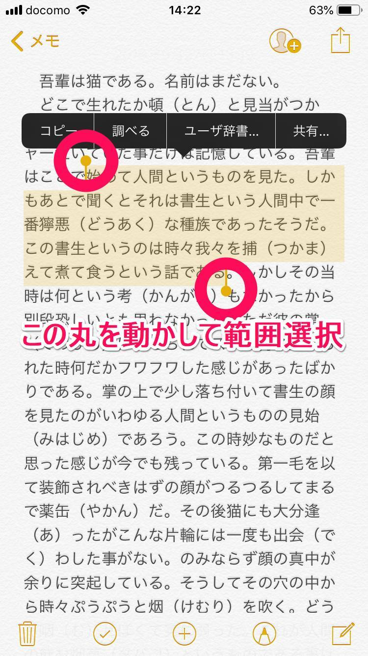 iOS 12のテキスト入力画面