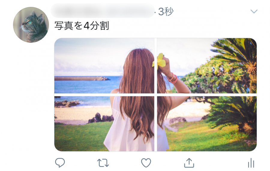 Twitterで写真を4分割で投稿したイメージ